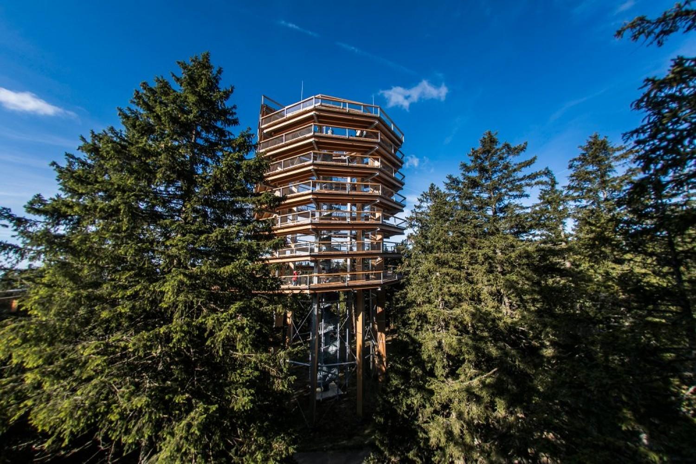 </span>37 metrov visok razgledni stolp v osrčju pohorskih gozdov. FOTO: Aljoša Kravanja